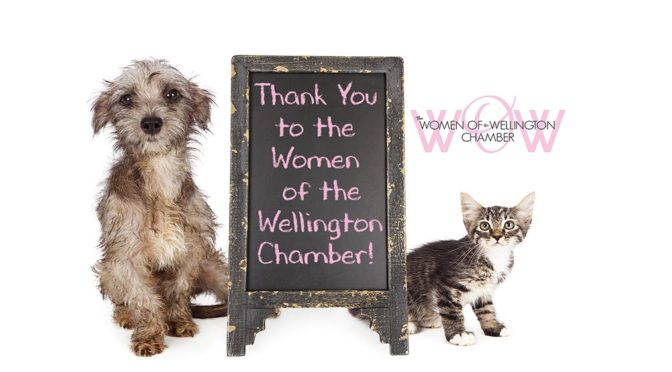 Women Of Wellington Reach Out To  Help Animals, Children And More