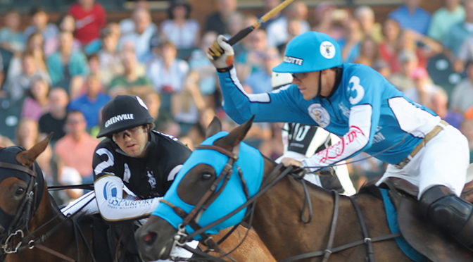 GLADIATOR POLO Returns to Wellington Bigger and Better in January 2018