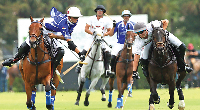 International Polo Club Plans Another Exciting Season Of High-Goal Polo In Wellington