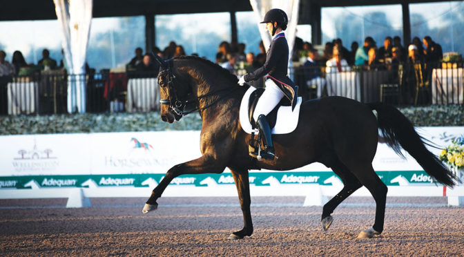 Busy Year Ahead For Dressage Star Kasey Perry-Glass And Dublet
