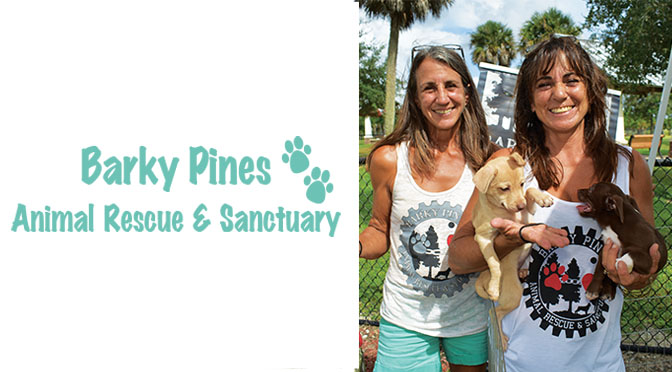 Barky Pines Animal Rescue & Sanctuary
