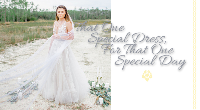 That One Special Dress, For That One Special Day