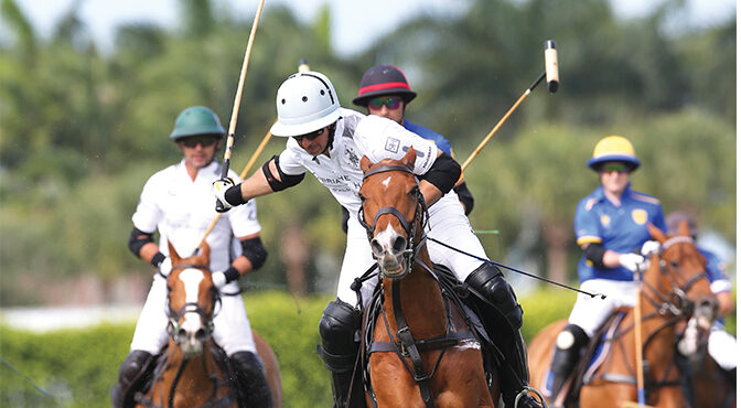 Faces of Polo – Michael Bickford
