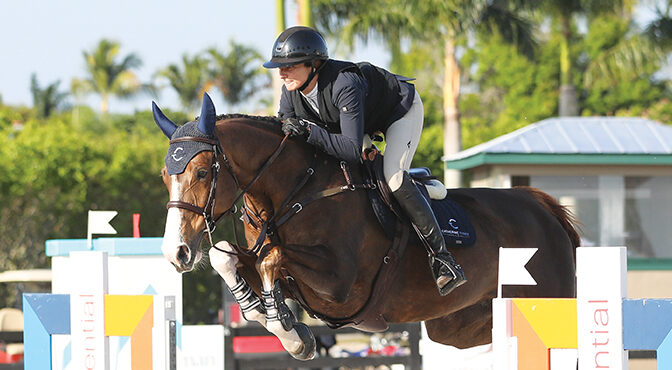 Show Jumper Catherine Tyree Perseveres To Develop A Thriving New Business